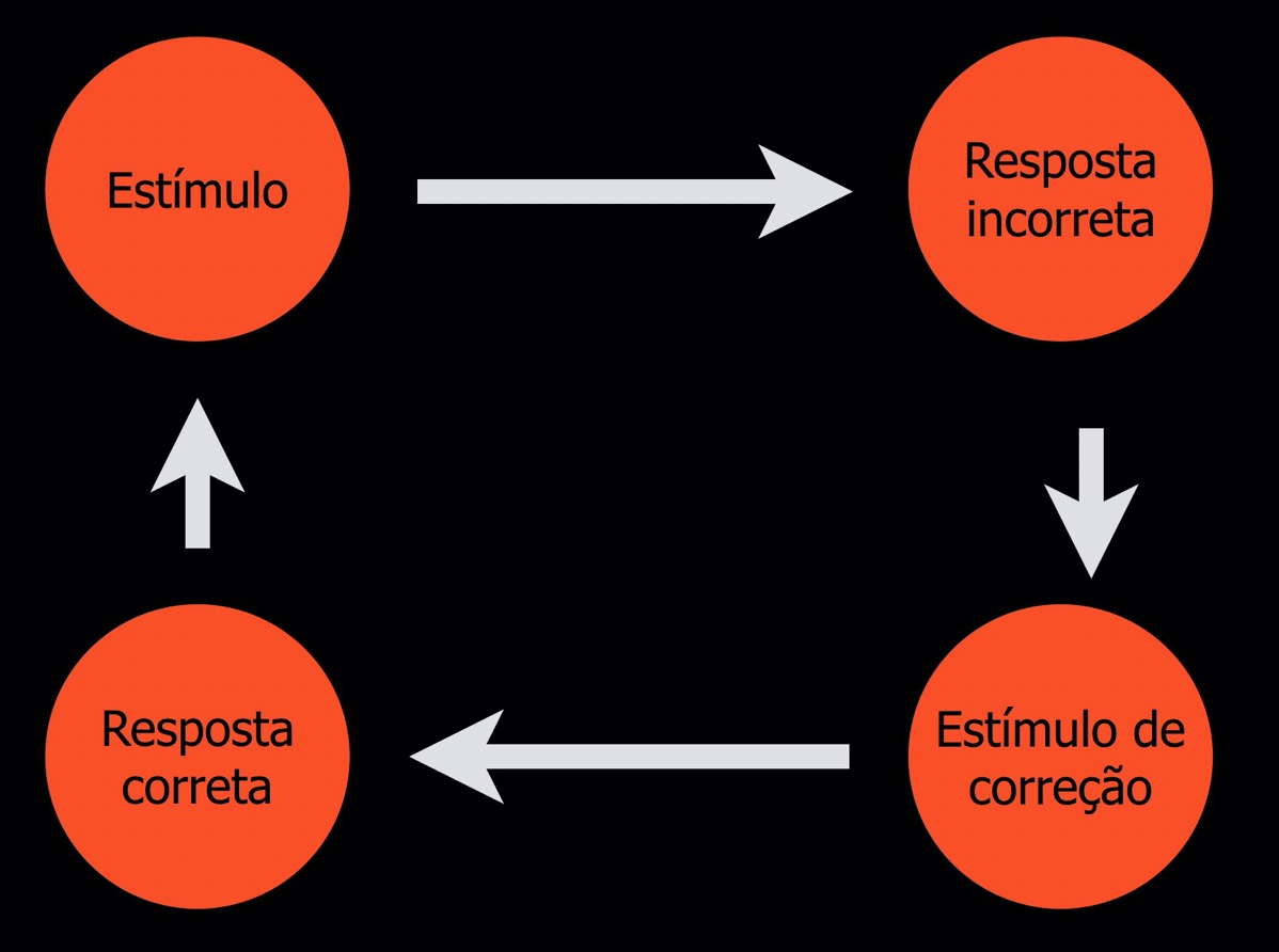 Estimulo correcao6