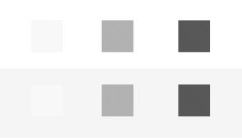Versão em tons de cinza da figura acima