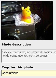 Exemplo de classificação por tags de uma foto no Flickr